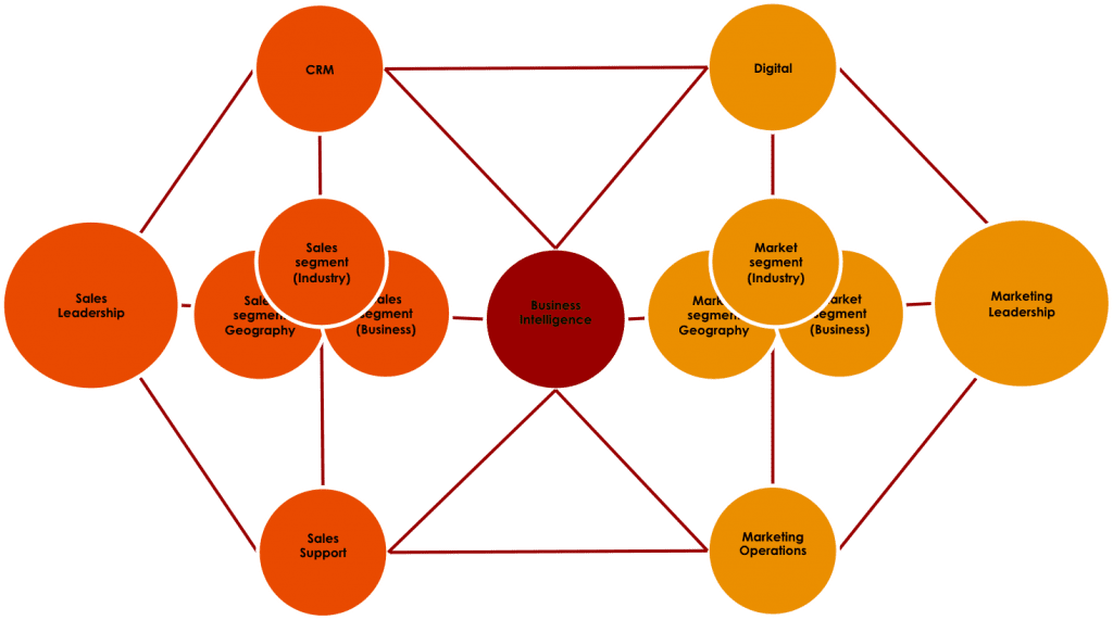 Bifurcated Centralized Professional Services Marketing Structure