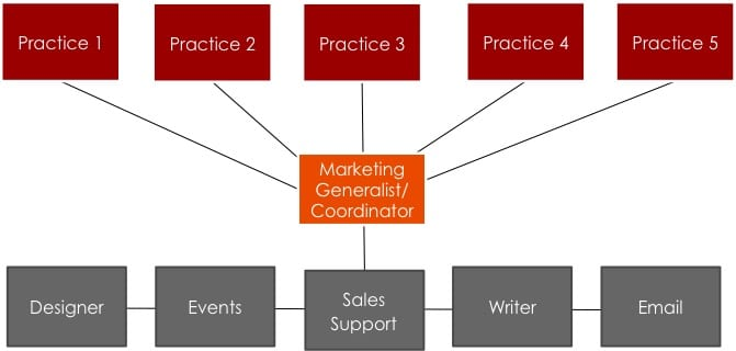 Traditional Professional Services Marketing Structure