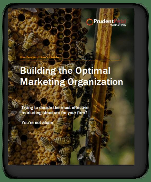Professional services marketing organization