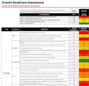 growth and marketing assessment professional services