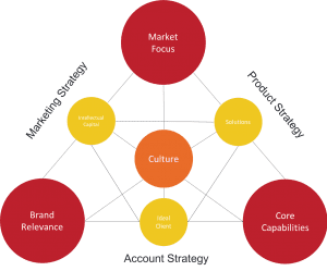 professional services marketing assessment